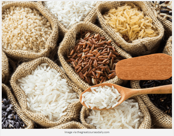 rice vermicelli manufacturer